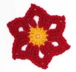August 2014: Star Flower Motif