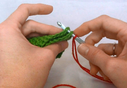 You can enter you hook under both loops or just the inside or outside.  I like to put my hook under both loops.